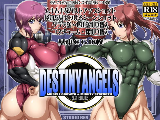 DESTINY ANGELSの表紙