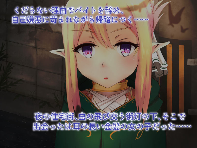 エルフのお姫様に誘われて異世界転移したら、奴●にされて、夜は休まる日の無い話