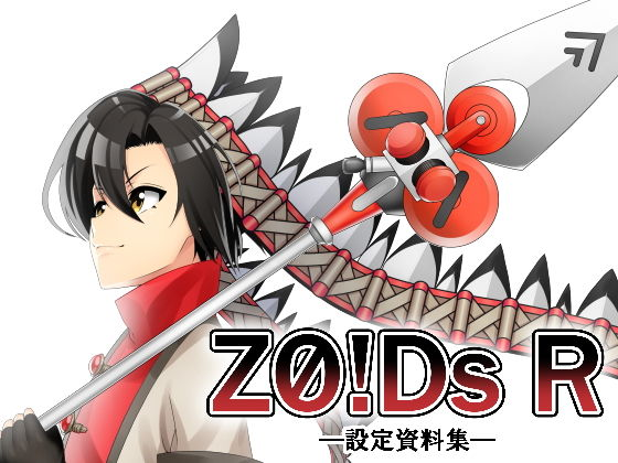 Z0!Ds R d_169532のパッケージ画像