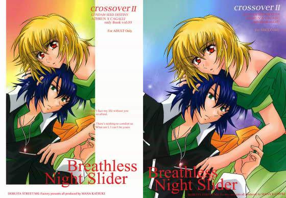 Breathless Night Slider d_009811のパッケージ画像