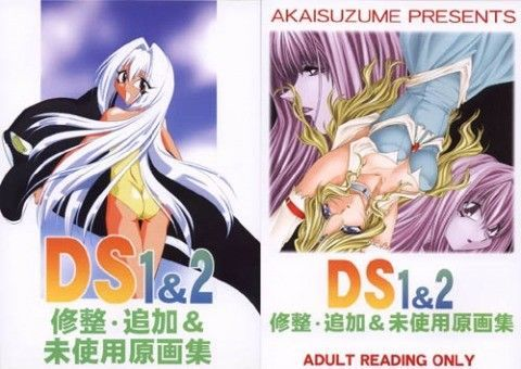 DS1&2修整・追加&未使用原画集