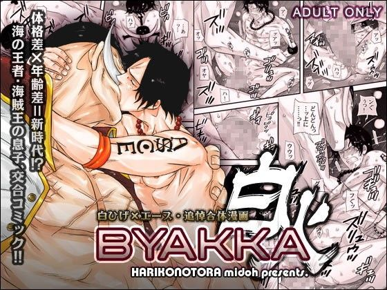 【ワンピース 同人】BYAKKA~白火~
