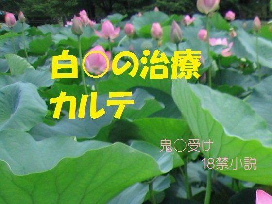 【千切り野菜 同人】桃源郷治療カルテ