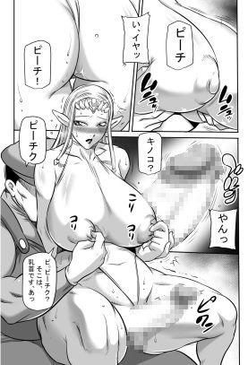 【ゼルダの伝説 同人】PRINCESSLIFE