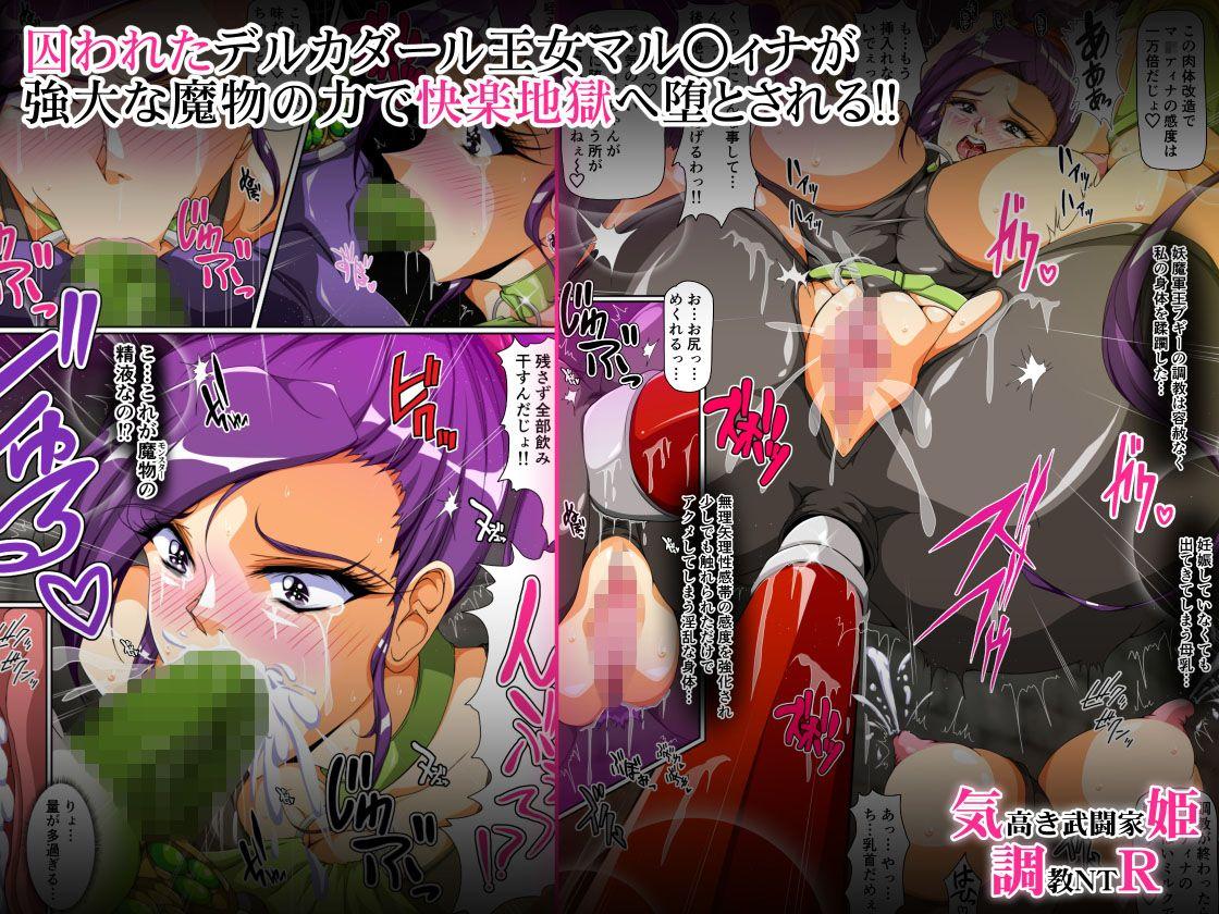 気高き武闘家姫 調教NTR