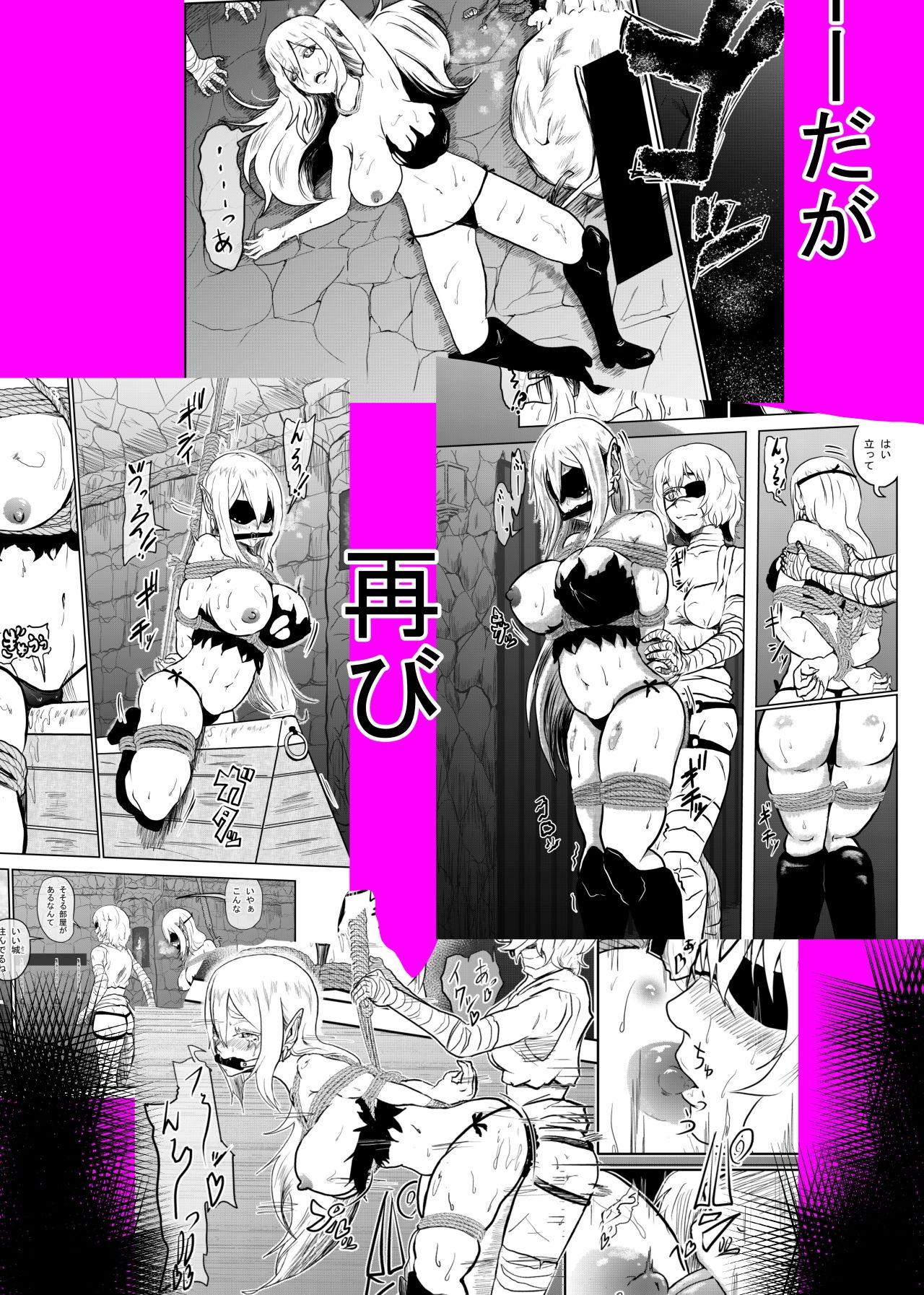 ヴァンパレイド3 〜吸血鬼 三姉妹 捕縛編〜