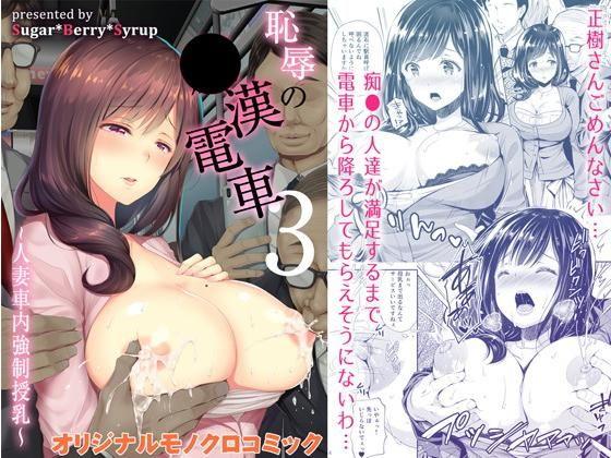 恥辱の痴○電車3〜人妻車内強制授乳〜の表紙