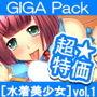 【超特価】[水着美少女]GIGA Pack vol.1 d_161265のパッケージ画像