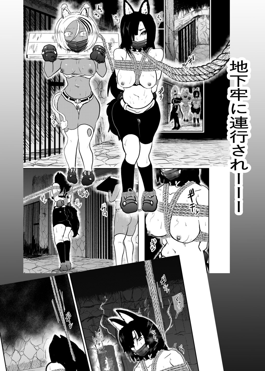 ヴァンパレイド8 ~白猫 黒狼 拘束編~