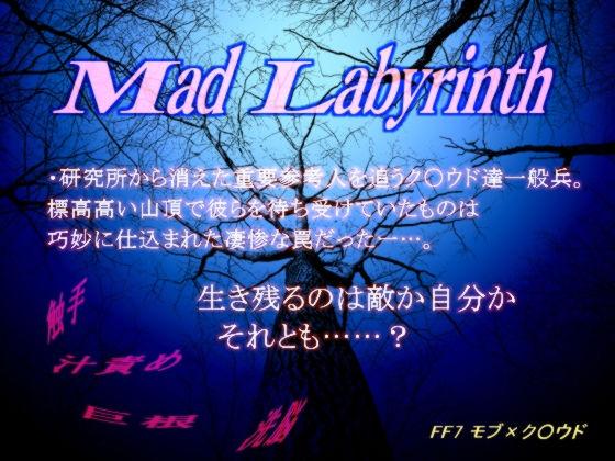 【ファイナルファンタジー 同人】マッド・ラビリンス