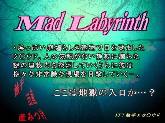 【ファイナルファンタジー 同人】マッド・ラビリンス-孕み部屋からの呼び声-