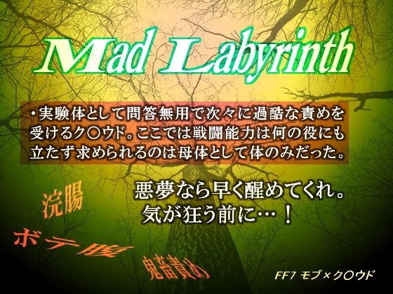 【ファイナルファンタジー 同人】マッド・ラビリンス-激浣腸は飲まれない-