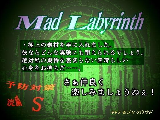 【ファイナルファンタジー 同人】マッド・ラビリンス-限界突破は破滅の音を奏でる-
