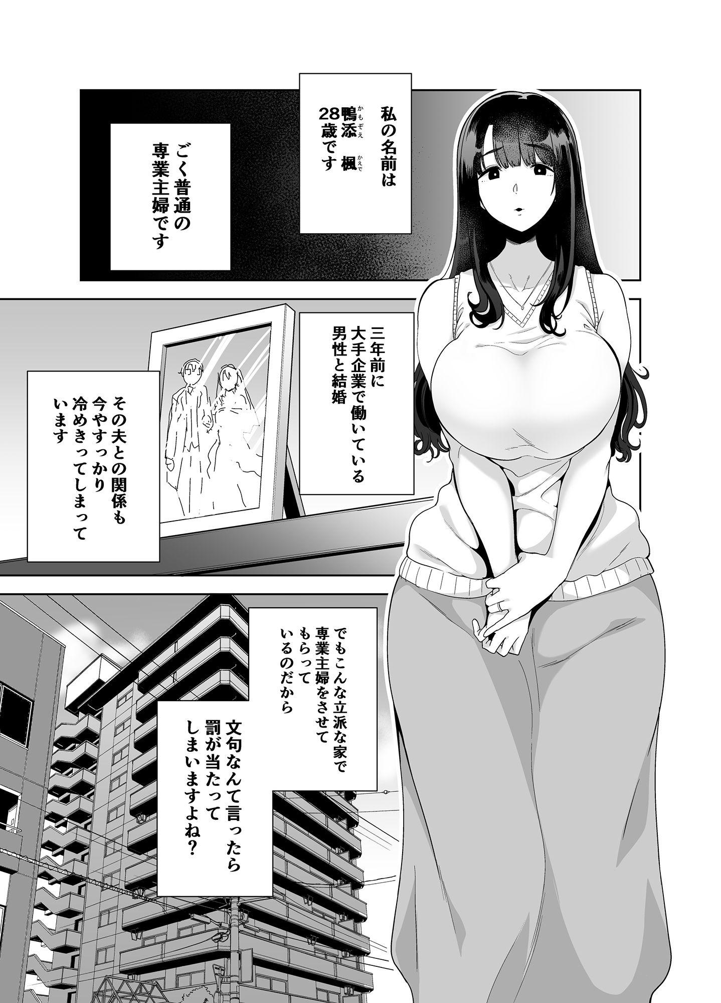 ワイルド式日本人妻の寝取り方 其ノ一のサンプル画像1
