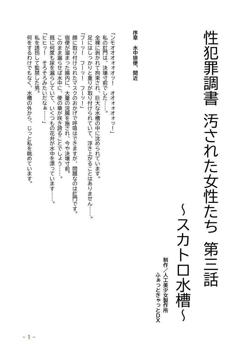 性犯罪調書 汚された女性たち ~コンプリートセット~