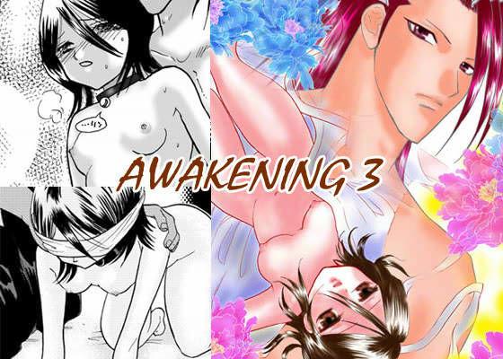 AWAKENING 3