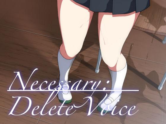 Necessary:Delete Voice