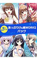 【期間限定】夏のあかべぇあっぷりけ&暁WORKSパック