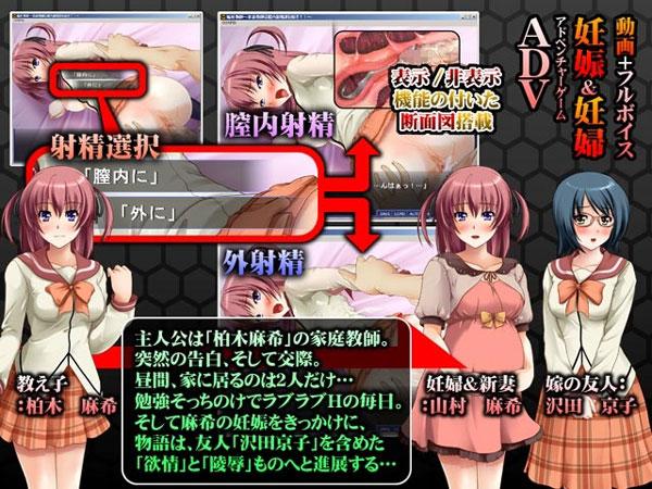 娠妊教師  家庭教師は膣内射精がお好き?! 2