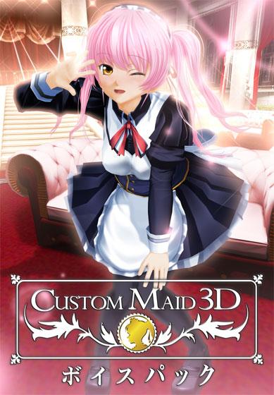 カスタムメイド3D ボイスパック パッケージ写真