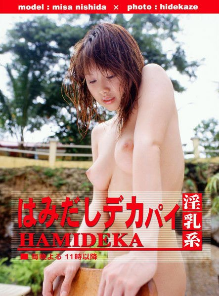 西田美沙 写真集「はみだしデカパイ」