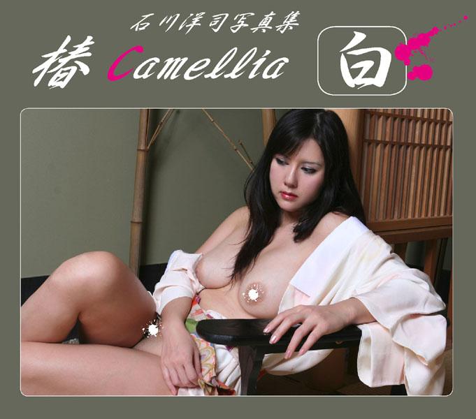 椿camellia白