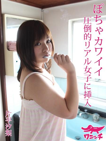 ぽちゃカワイイ 圧倒的リアル女子に挿入 片平汐梨