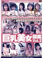巨乳美女図鑑 Vol.2威令