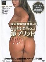 欧米桃尻排泄美人 排ブリット VOL.3 ダウンロード
