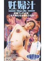 妊婦汁 Vol.2 ダウンロード