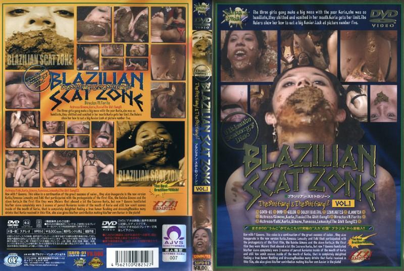 BLAZILIAN SCAT ZONE VOL.1