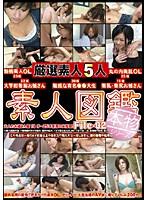 素人図鑑 File-02 ダウンロード