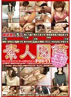 素人図鑑 File-11 ダウンロード