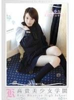 高貴美少女学園 2 ダウンロード