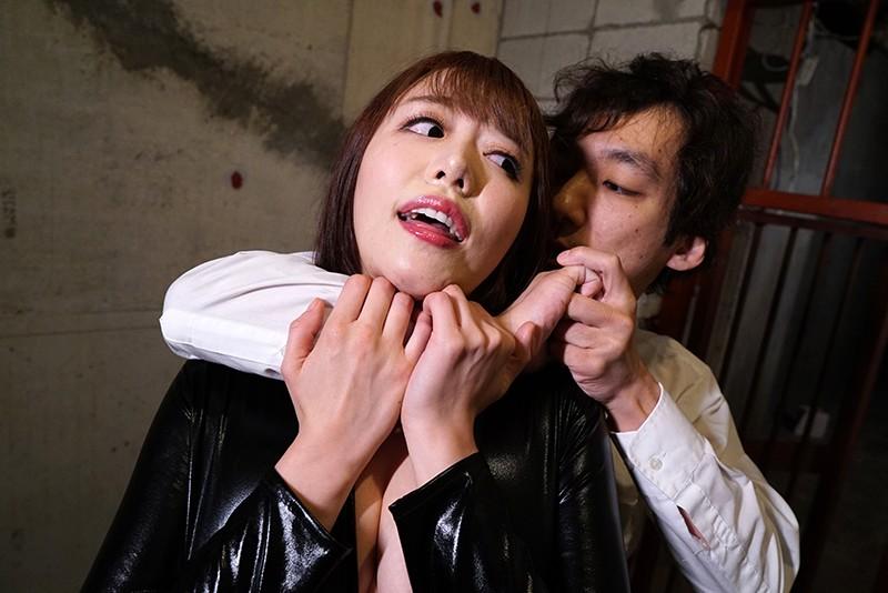 潜入女捜査官3