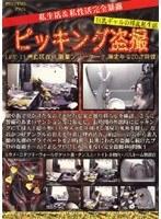 ピッキング盗撮 LIFE-11 ダウンロード