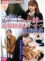 一人暮らしの兄のアパートに訪ねてきた妹との近親相姦わいせつ盗撮映像 ダウンロード