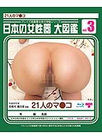 日本の女性器 大図鑑 VOL.3 ダウンロード