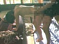 (134prk022)[PRK-022] 縄の覗き窓 岡野美憂 ダウンロード 29