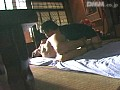 (134prk022)[PRK-022] 縄の覗き窓 岡野美憂 ダウンロード 32