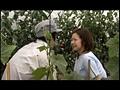 農家の嫁 夫婦交換の村sample1