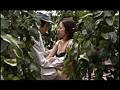 農家の嫁 夫婦交換の村sample6