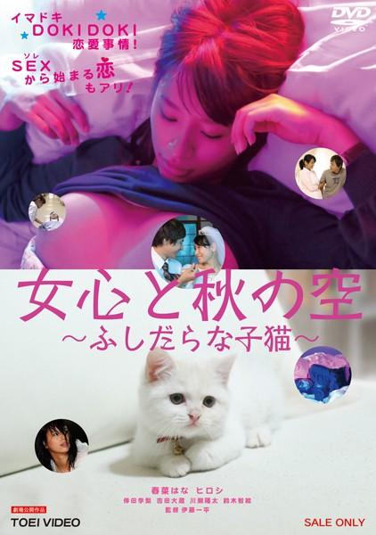ピンク映画 ch、ドラマ、ハイビジョン、Vシネマ 女心と秋の空 〜ふしだらな子猫〜