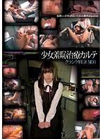 少女羞恥治療カルテ クランケ FILE NO.1 ダウンロード