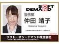 【VR】SOD女子社員 うぶな新人女子社員6名6セックス特盛り4研...sample2