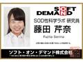 【VR】SOD女子社員 うぶな新人女子社員6名6セックス特盛り4研...sample7