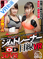 【VR】開脚ストレッチ・乳揺れスパーリング・巨乳密着マウントポジション ジムトレーナー目線VR(13dsvr00408)
