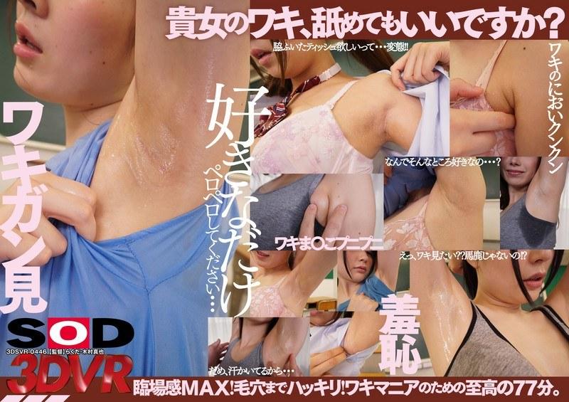 (13dsvr00446)[DSVR-446] 【VR】【ワキ舐めVR】 〜貴女のワキ舐めてもいいですか?〜 ダウンロード