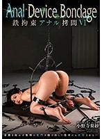 Anal Device Bondage VI 鉄拘束アナル拷問 小野寺梨紗
