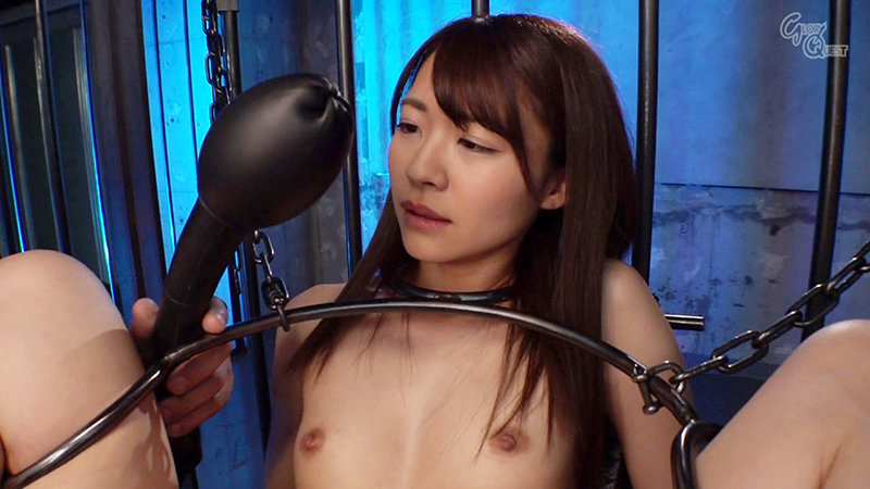 Ma○ko Device BondageXXII 鉄拘束マ○コ拷問 東條なつ キャプチャー画像 11枚目